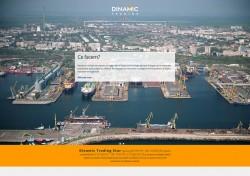 dinamic 712x501 250x176 - Magazin online